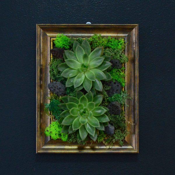 tablou plante naturale si licheeni